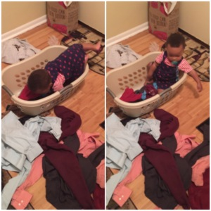 Devin In Laundry Basket