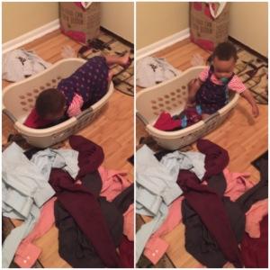 Devin In Laundry Basket